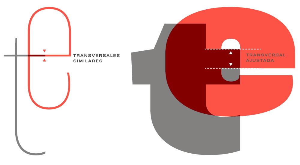 Ajustes en transversales de acuerdo a la variante